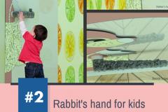 Rabbit's hand